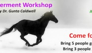 empowerment workshop 3